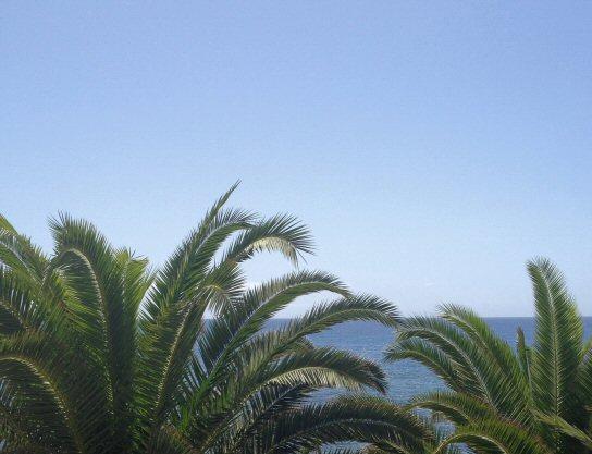 Tenerife_running (5)