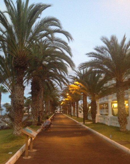 Tenerife_running (6)